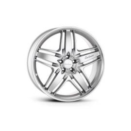 Lorinser RS-9 silver painted Wheel 10x22 - 5569